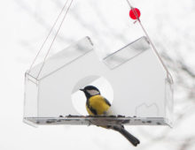 MOCAK bird feeder